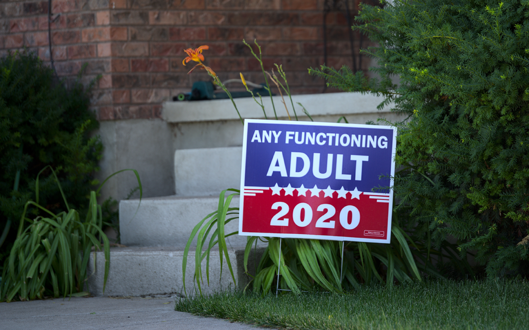 Yard Signs: The (political) sign of the times